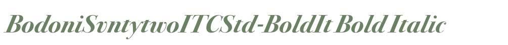 BodoniSvntytwoITCStd-BoldIt