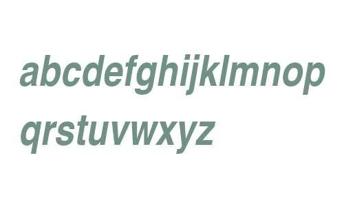 NimbusSanConL W06 Bold Italic