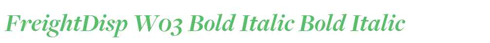 FreightDisp W03 Bold Italic