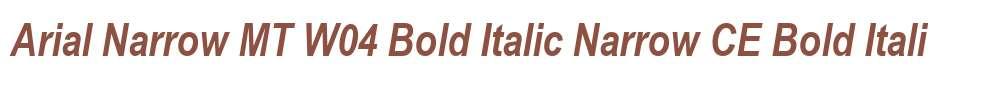 Arial Narrow MT W04 Bold Italic