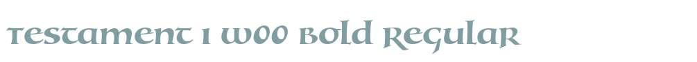 Testament I W00 Bold