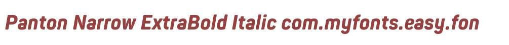 Panton Narrow ExtraBold Italic