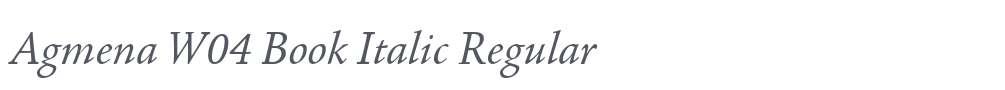 Agmena W04 Book Italic