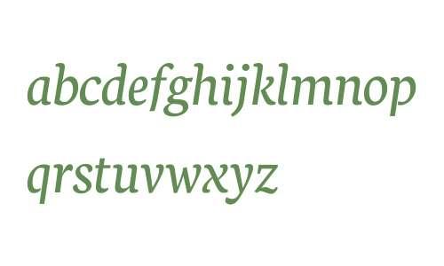 Neuton Italic V2