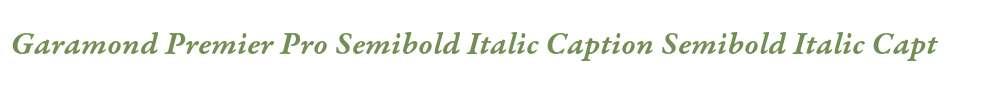 Garamond Premier Pro Semibold Italic Caption