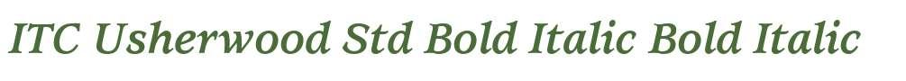 ITC Usherwood Std Bold Italic
