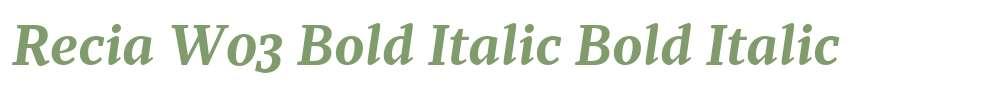 Recia W03 Bold Italic