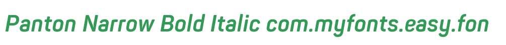Panton Narrow Bold Italic