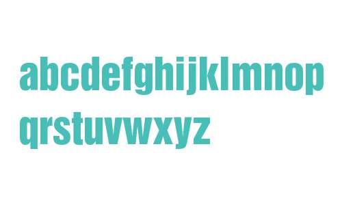 HelveticaInseratLTStd-Roman