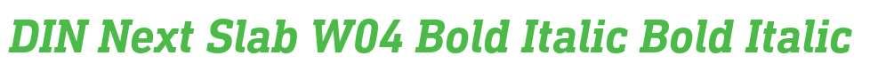 DIN Next Slab W04 Bold Italic
