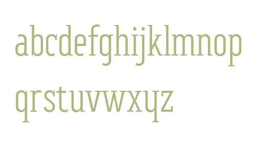 BF Corpa Serif W01 Light