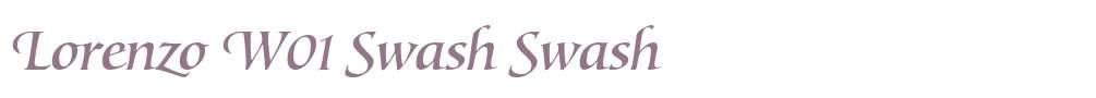 Lorenzo W01 Swash