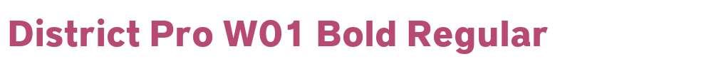 District Pro W01 Bold