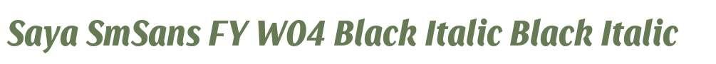 Saya SmSans FY W04 Black Italic