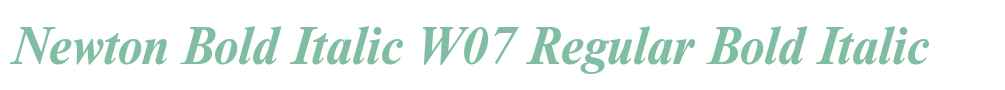 Newton Bold Italic W07 Regular
