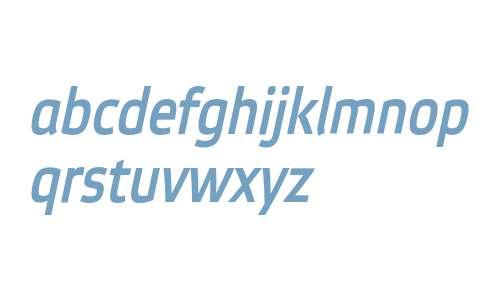 EtelkaNarrowMediumPro-Italic