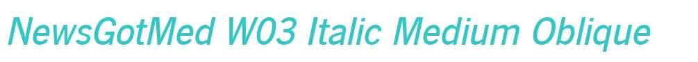 NewsGotMed W03 Italic