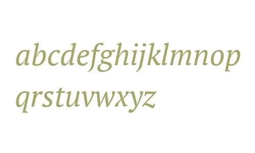PT Serif Italic V1