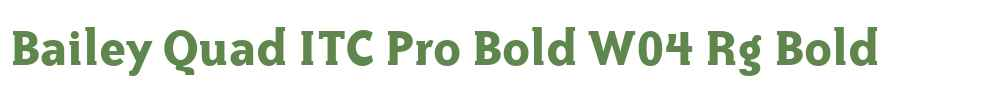 Bailey Quad ITC Pro Bold W04 Rg