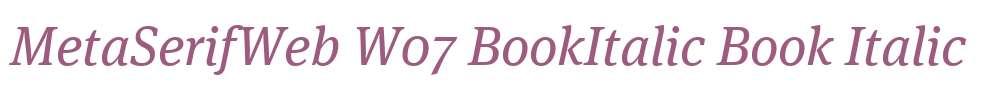 MetaSerifWeb W07 BookItalic