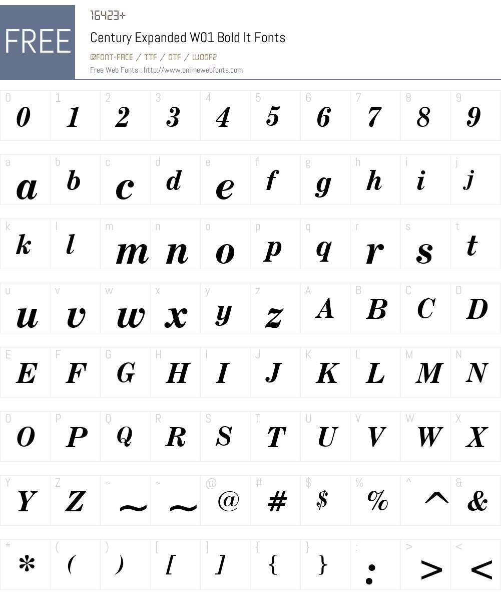 CenturyExpandedW01-BoldIt Font Screenshots