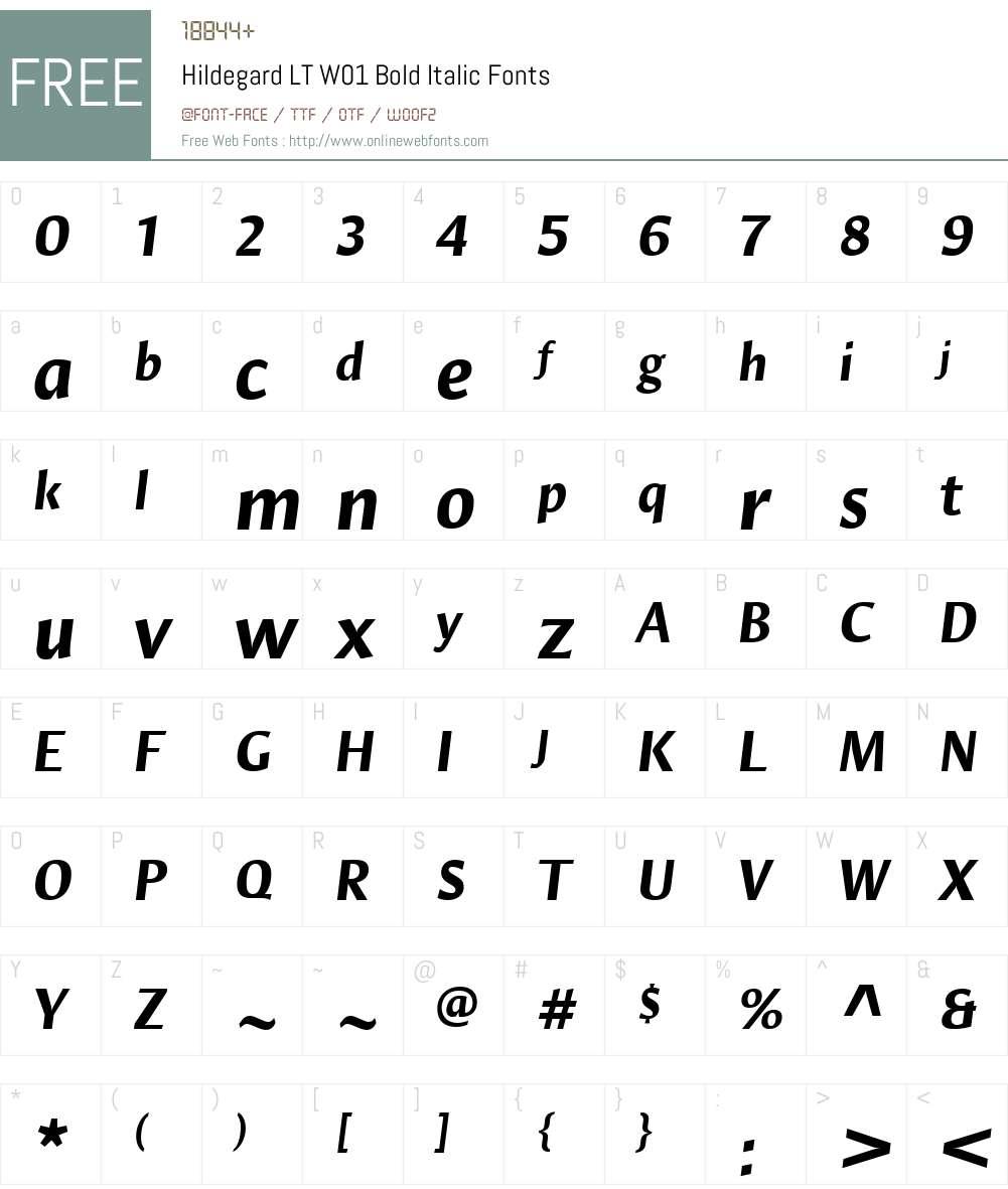 HildegardLTW01-BoldItalic Font Screenshots