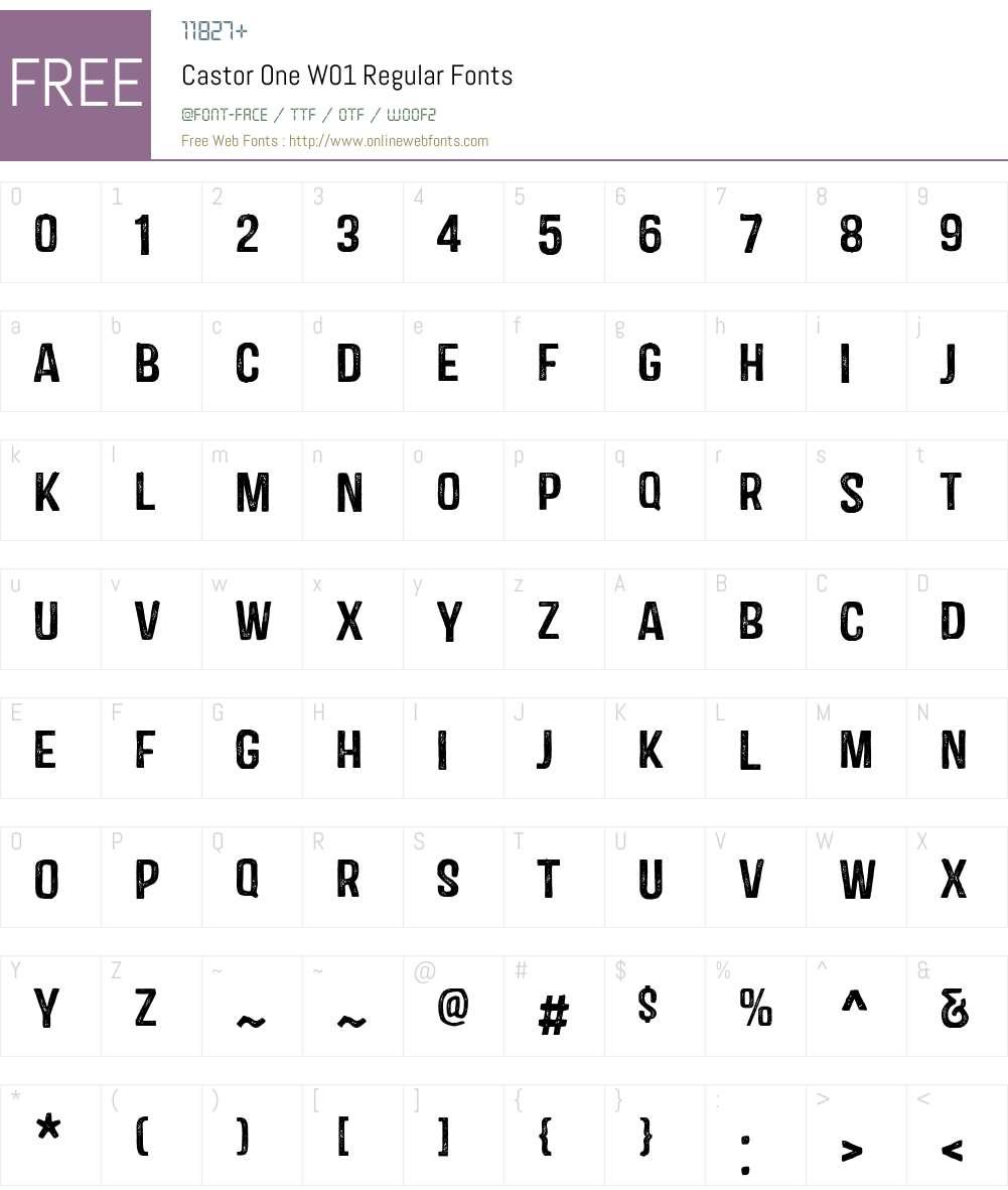 CastorOneW01-Regular Font Screenshots