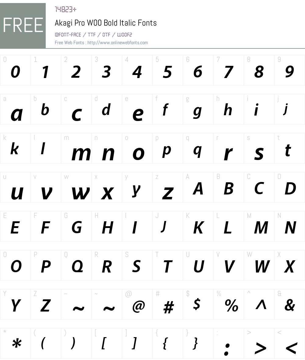 AkagiProW00-BoldItalic Font Screenshots