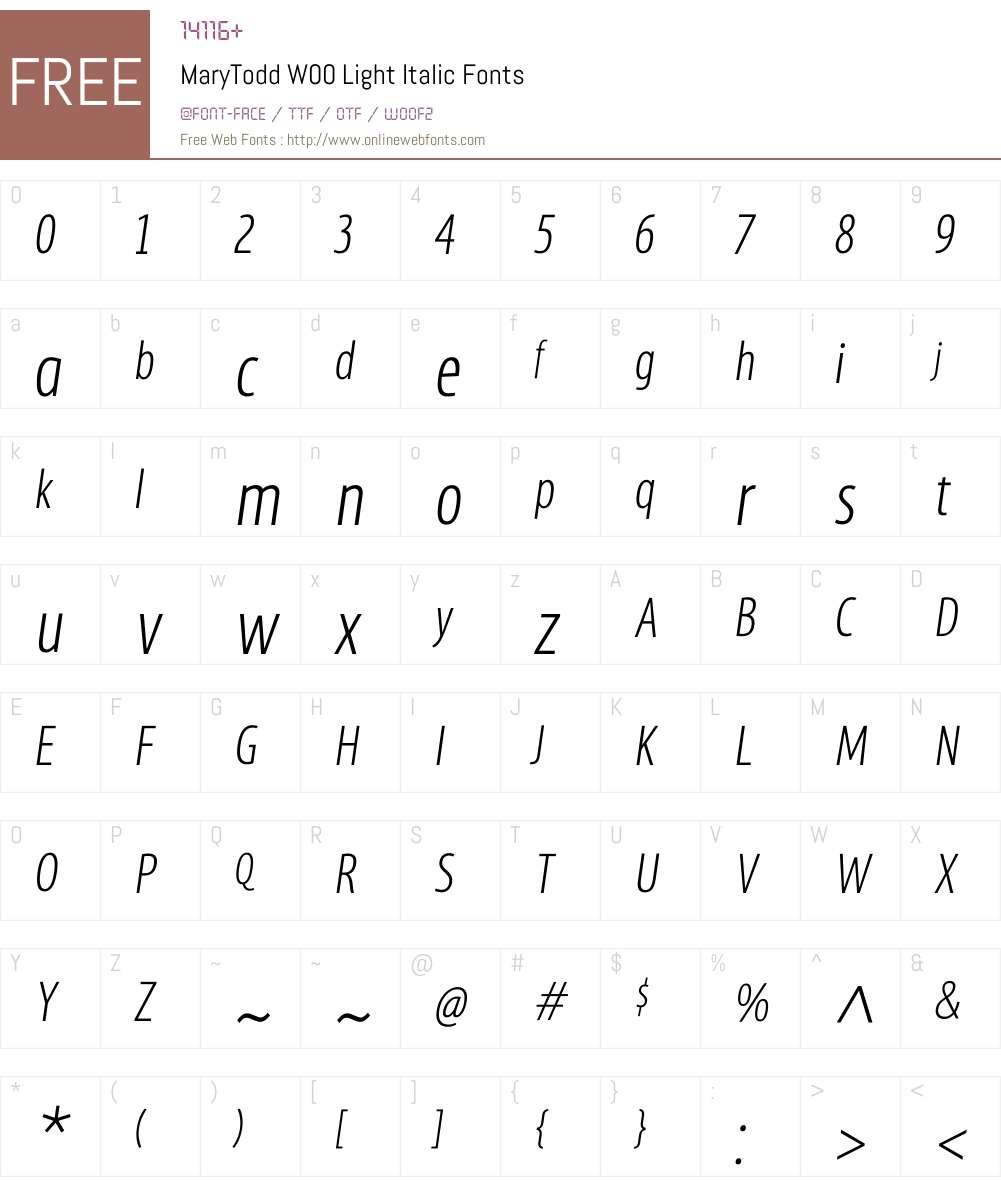 MaryToddW00-LightItalic Font Screenshots