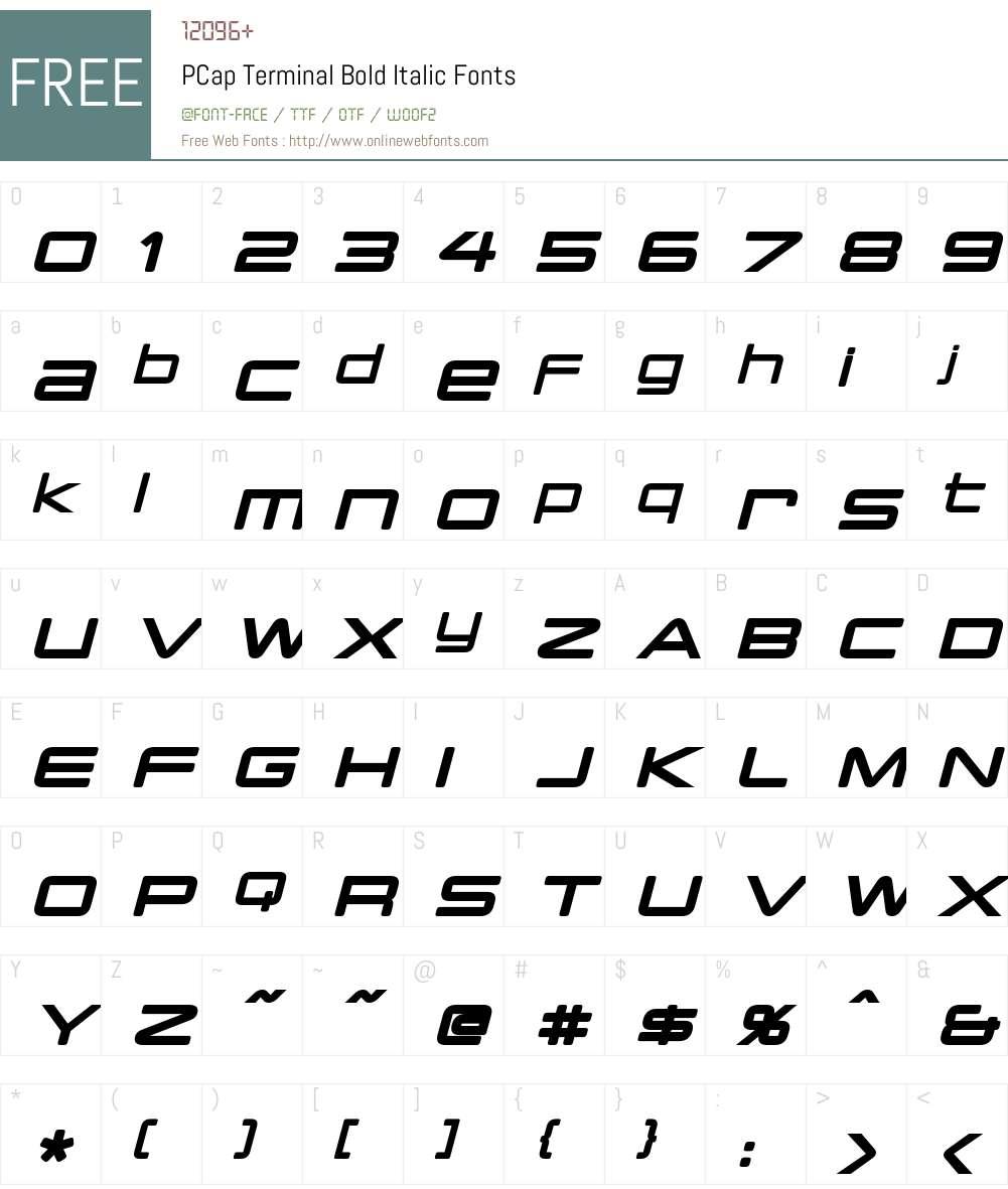 PCap Terminal Font Screenshots