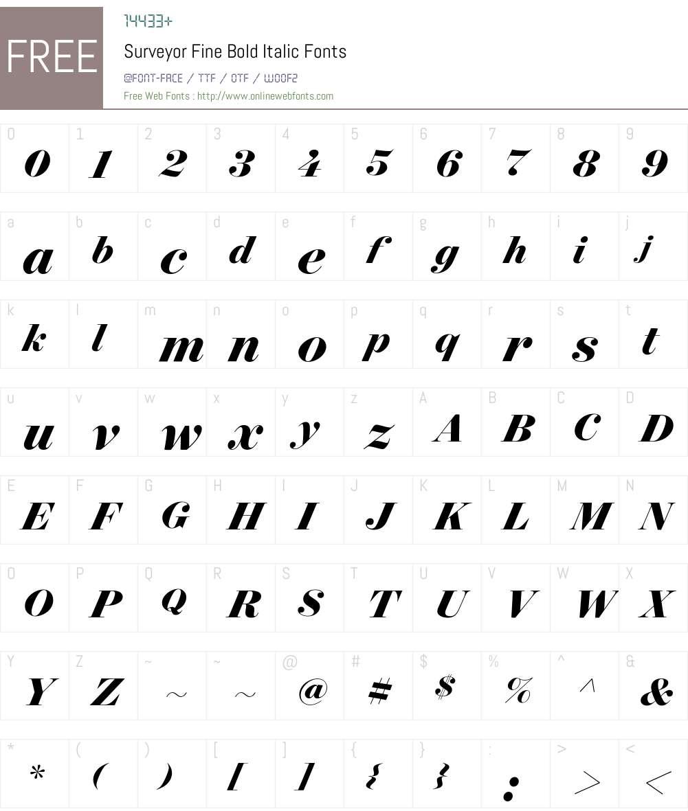 Surveyor Fine Bold Font Screenshots