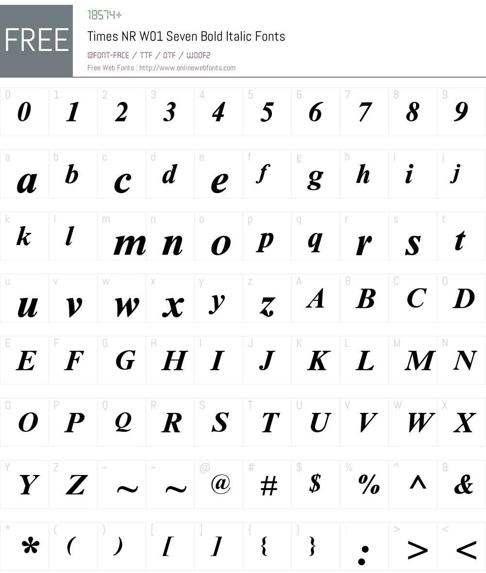 TimesNRW01-SevenBoldItalic Font Screenshots