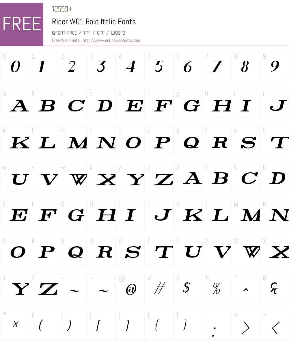 RiderW01-BoldItalic Font Screenshots