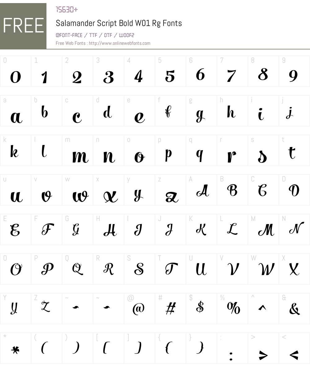 SalamanderScriptBoldW01-Rg Font Screenshots