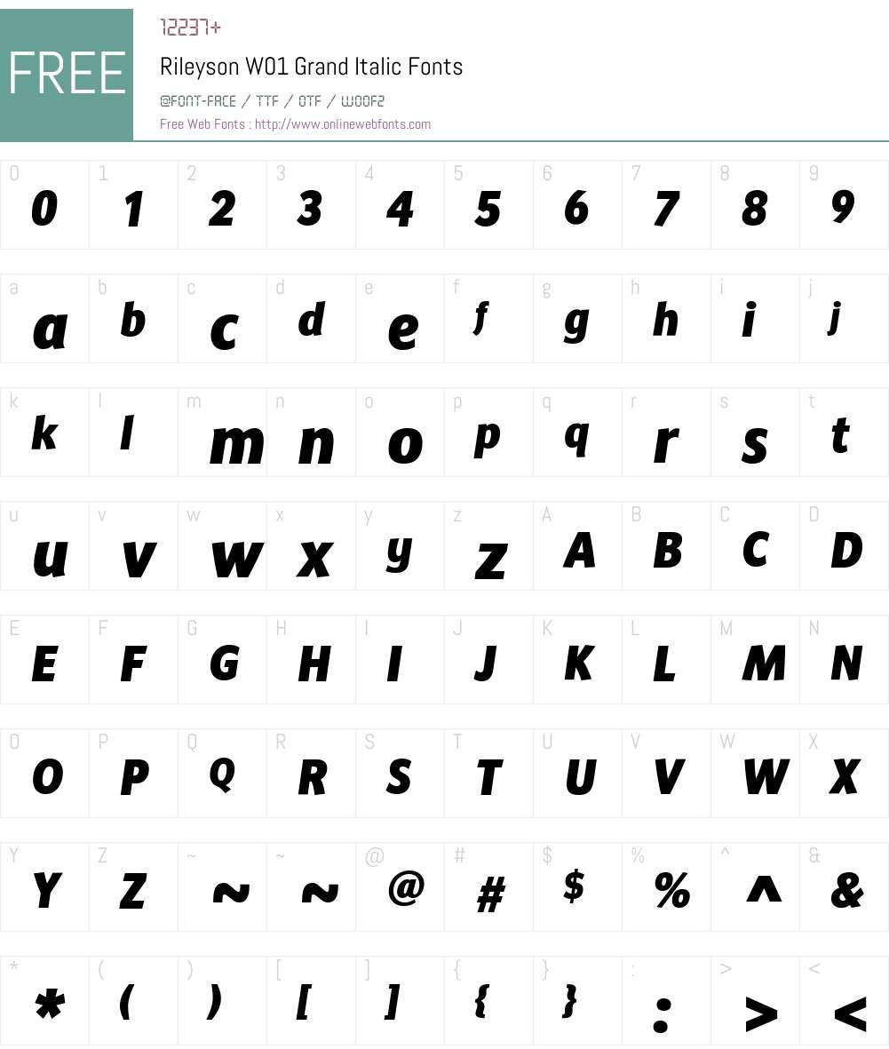 RileysonW01-GrandItalic Font Screenshots