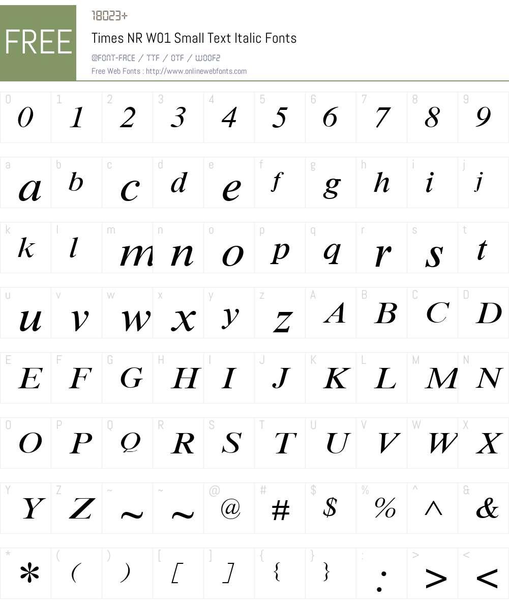 TimesNRW01-SmallTextItalic Font Screenshots