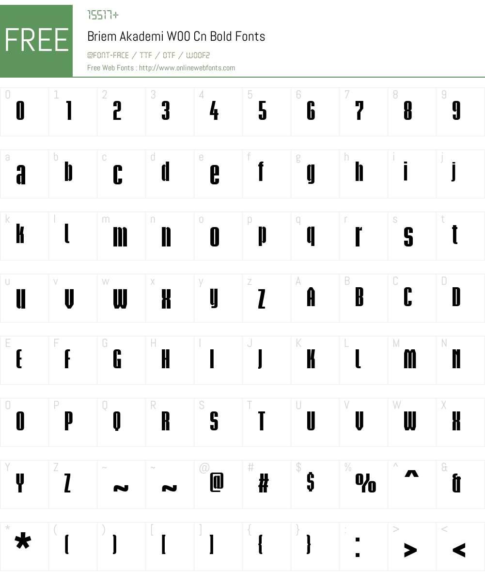 BriemAkademiW00-CnBold Font Screenshots