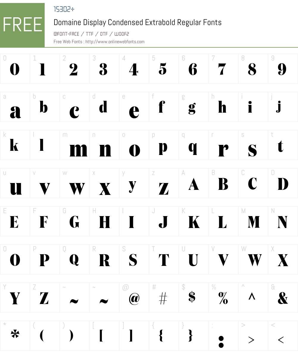 Copyright Klim Type Foundry Font Screenshots