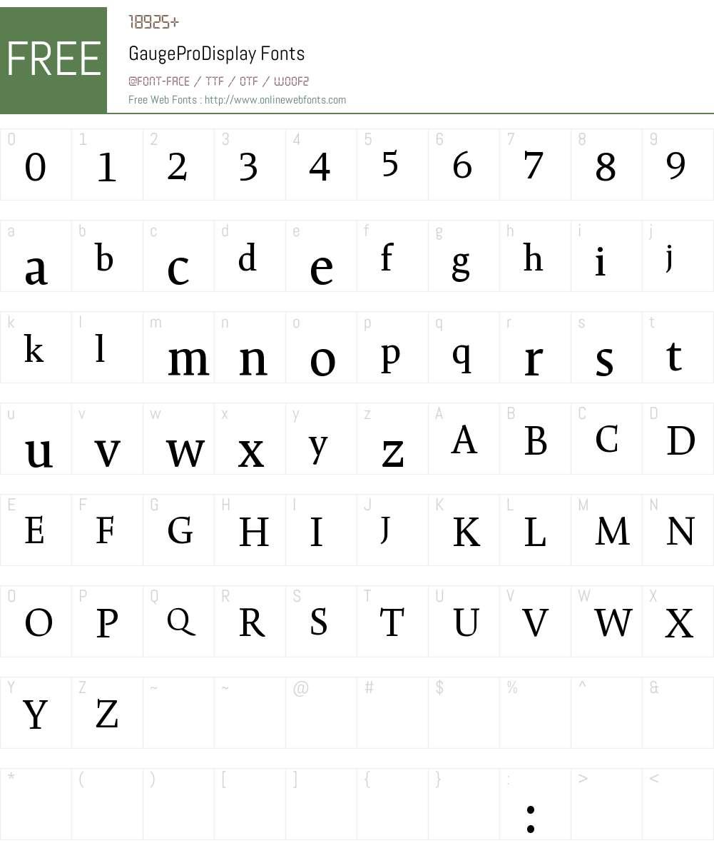 GaugePro Display Font Screenshots