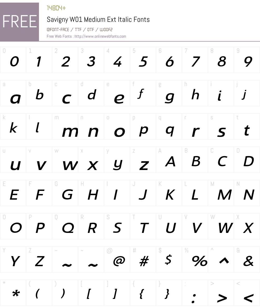 SavignyW01-MediumExtItalic Font Screenshots