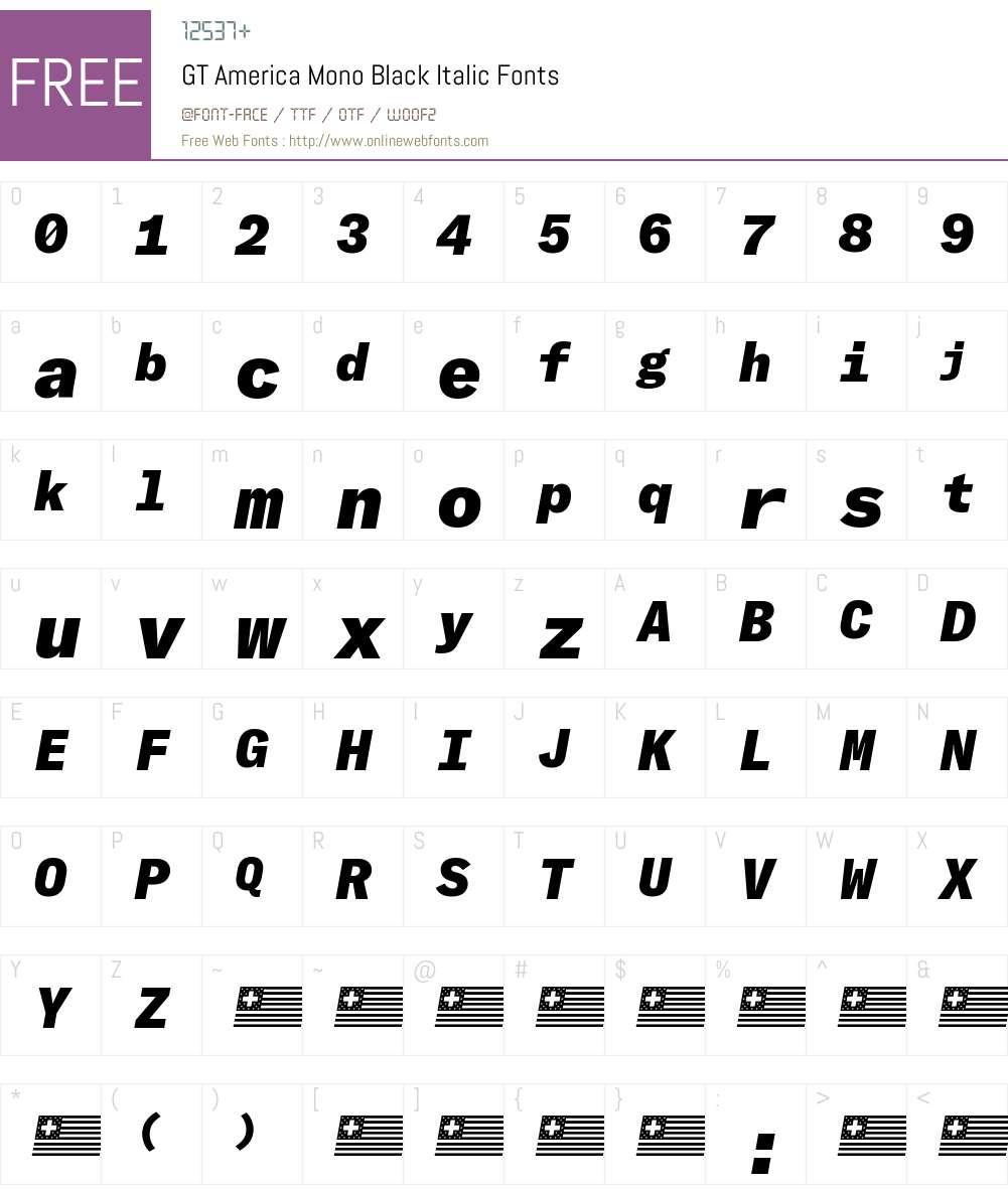 GT America Mono Black Font Screenshots