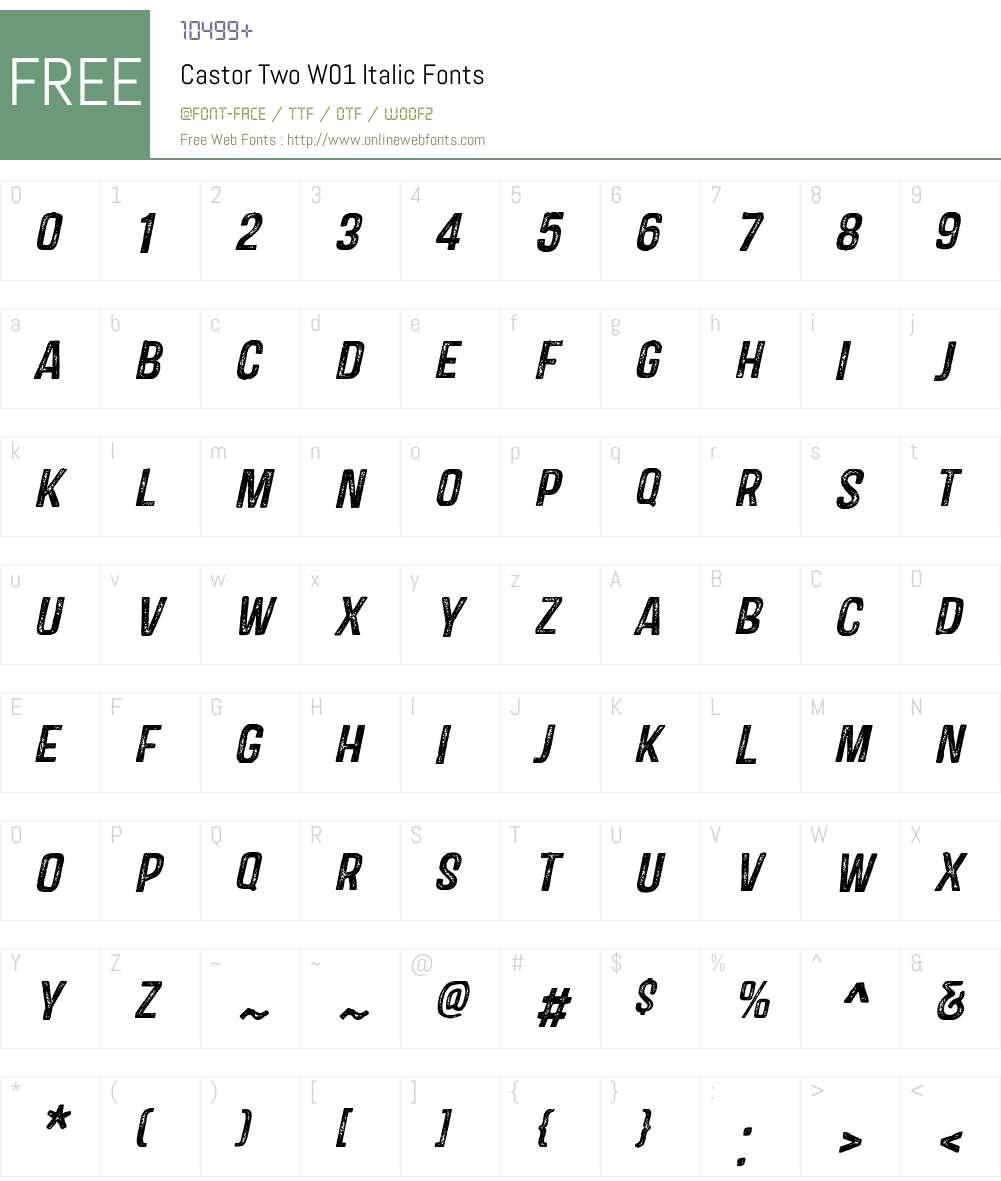 CastorTwoW01-Italic Font Screenshots