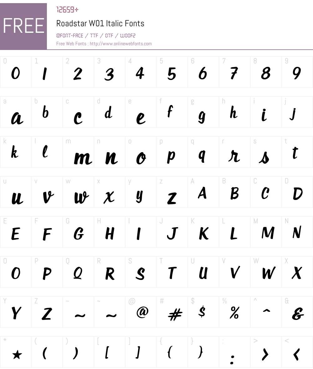 RoadstarW01-Italic Font Screenshots