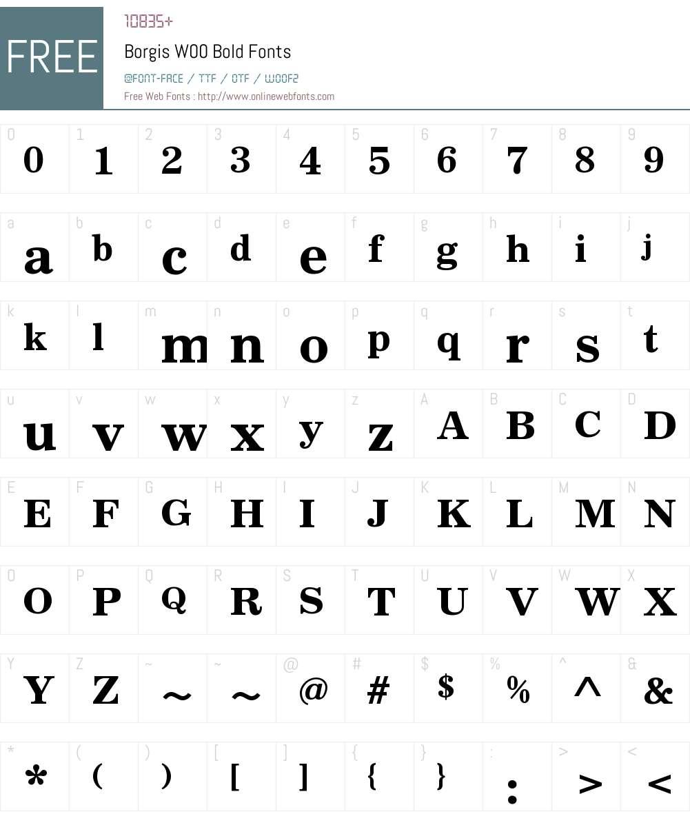 BorgisW00-Bold Font Screenshots