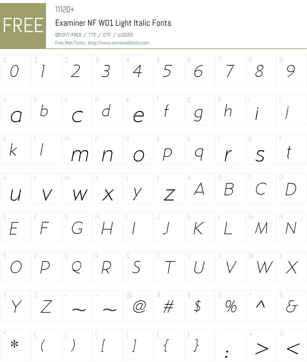 ExaminerNFW01-LightItalic Font Screenshots