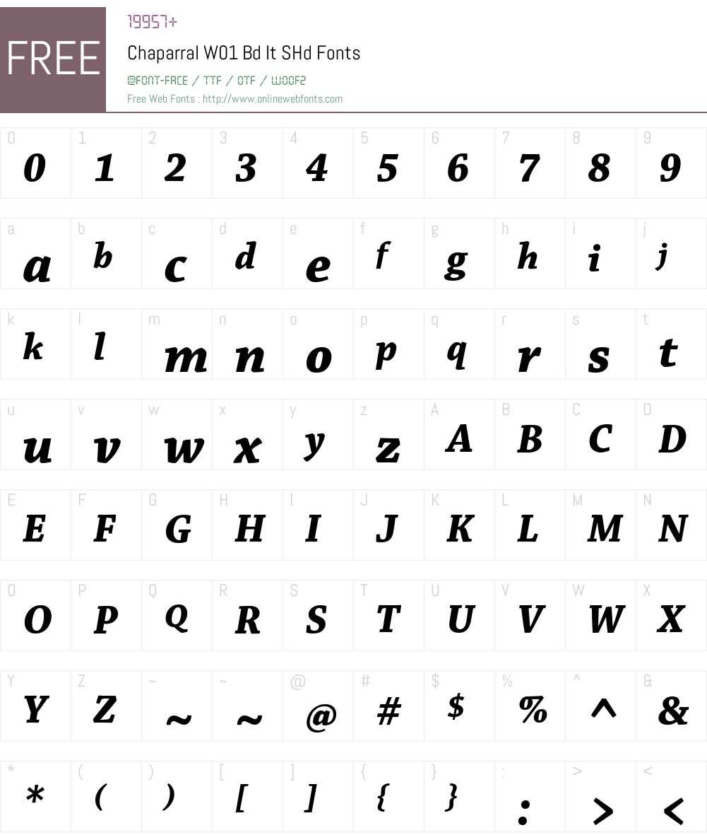 ChaparralW01-BdItSHd Font Screenshots