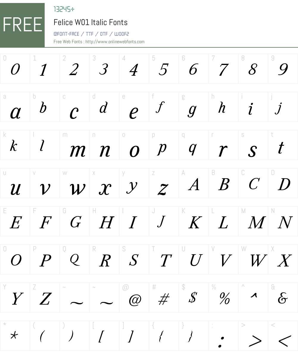 FeliceW01-Italic Font Screenshots