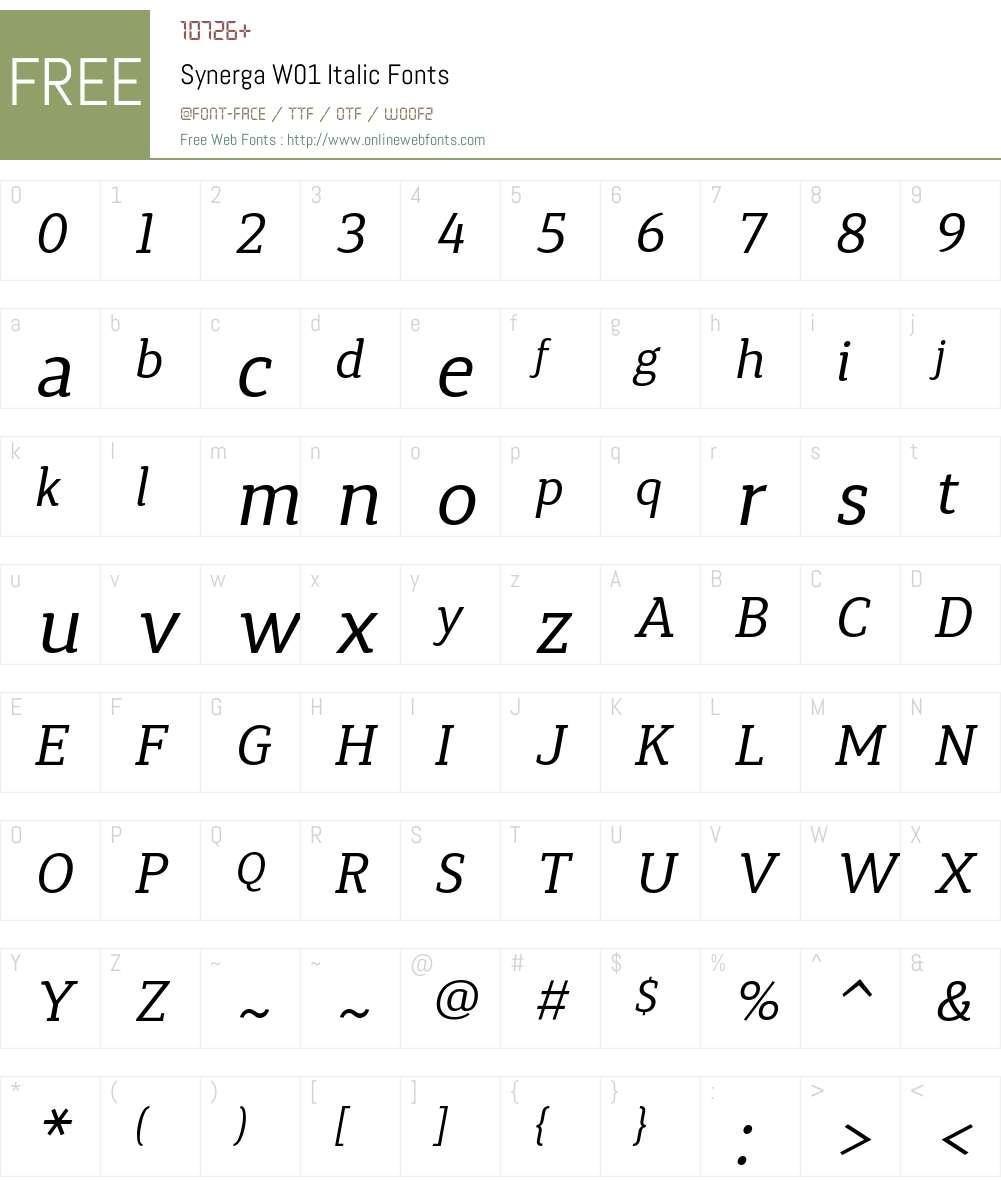 SynergaW01-Italic Font Screenshots