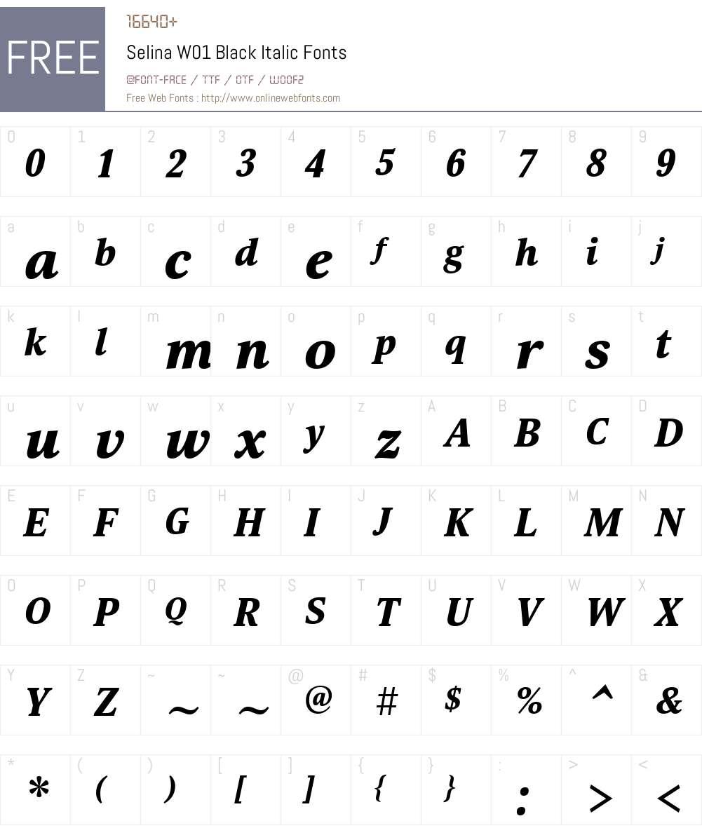 SelinaW01-BlackItalic Font Screenshots