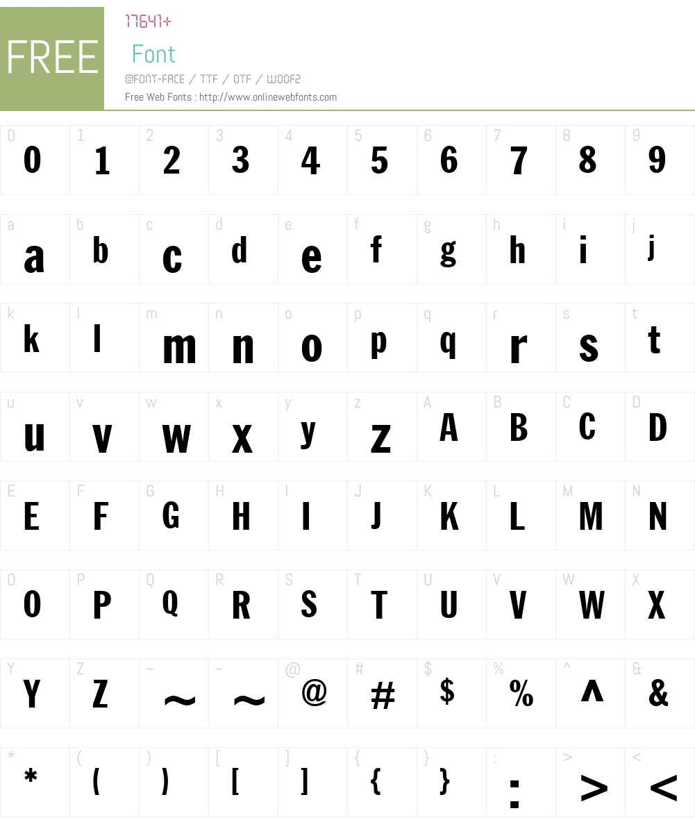 MTFranklinGothicW01-XtraCn Font Screenshots
